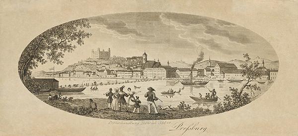 Antal József Strohmayer, Adolf Dworzack – Bratislava v 19. stor. - pohľad z juhu