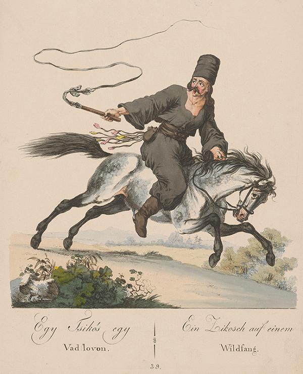 Stredoeurópsky grafik z 19. storočia – Pastier koní