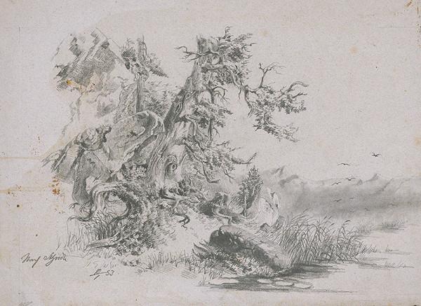 Stredoeurópsky grafik z 19. storočia - Horská krajina II.