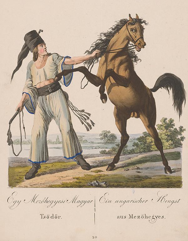 Stredoeurópsky grafik z 19. storočia - Koniar z Mezöhegyu