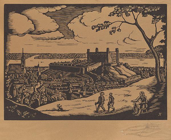 Teodor Janoška, Matthäus Merian – Pohľad na Bratislavu zo severozápadu