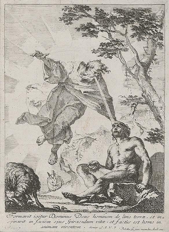 Franz Xaver Carl Palko – Stvorenie Adama
