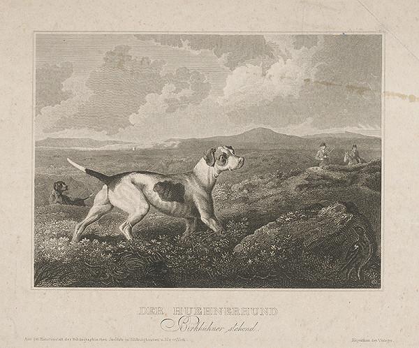 Nemecký maliar z 19. storočia - Poľovnícky pes