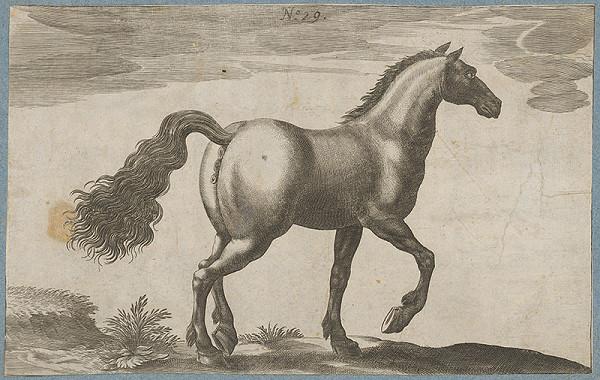 Stredoeurópsky maliar z 19. storočia - Kôň