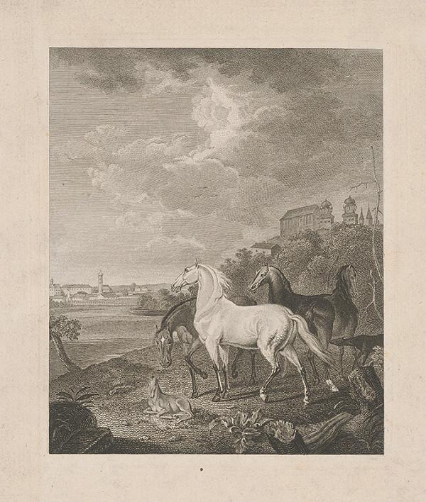 Stredoeurópsky maliar z 19. storočia - Kone