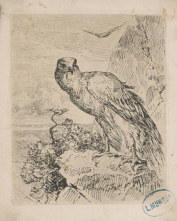 Nemecký maliar z 19. storočia – Skalný orol