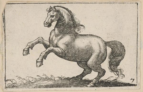 Stredoeurópsky maliar z 18. storočia - Kôň