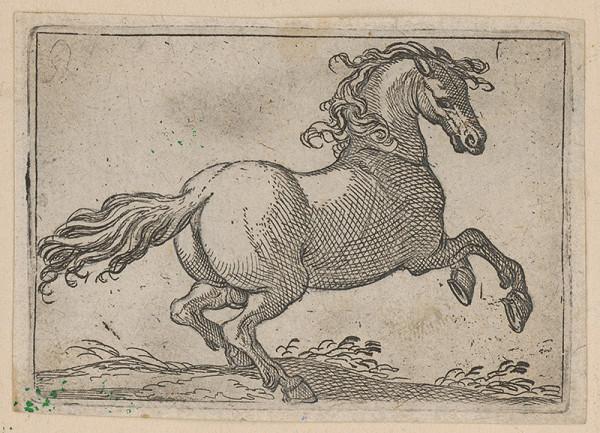 Stredoeurópsky maliar z 18. storočia – Kôň
