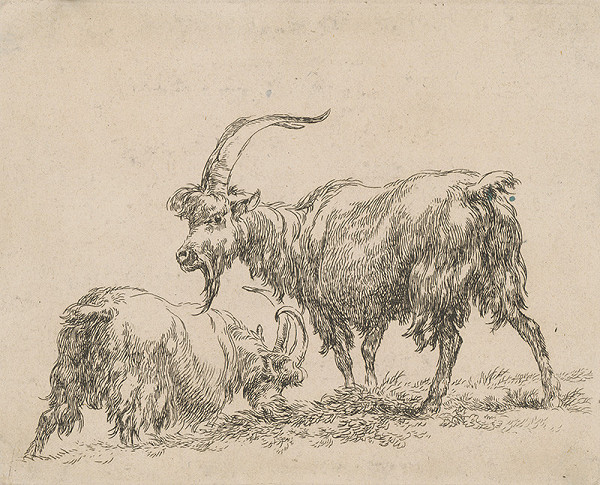 Nicolaes Claes Berchem st. – Kozy