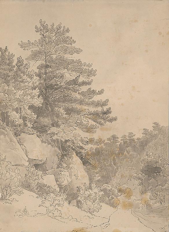 Rudolf Lang - Horská krajina