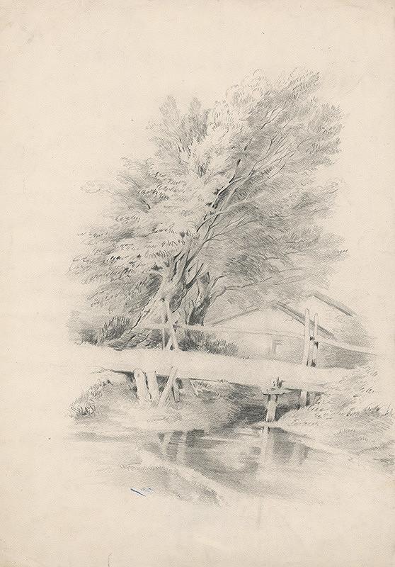 Stredoeurópsky grafik z 19. storočia - Lávka cez potok