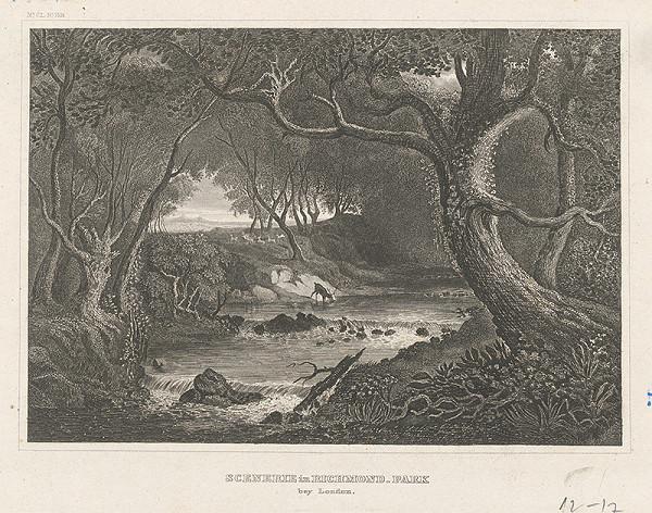 Stredoeurópsky grafik z 19. storočia – Čast parku Richmond pri Londýne