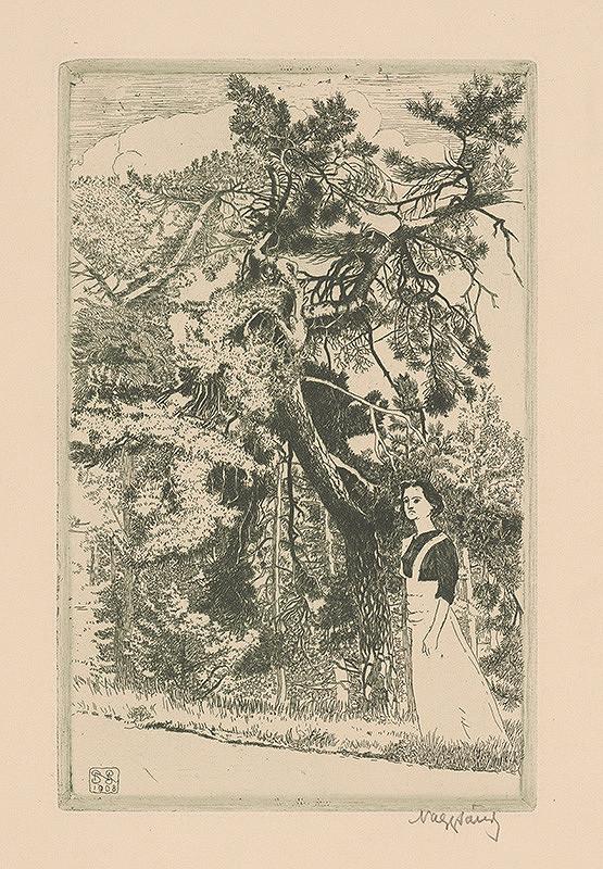 Sándor Nagy – Dievča v jedľovom lese