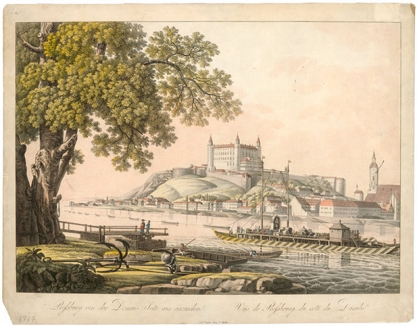 Stredoeurópsky grafik z 19. storočia - Pohľad na Bratislavu z juhu
