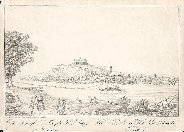Joseph Schaffer, Peter Schaffer - Pohľad na Bratislavu z juhu
