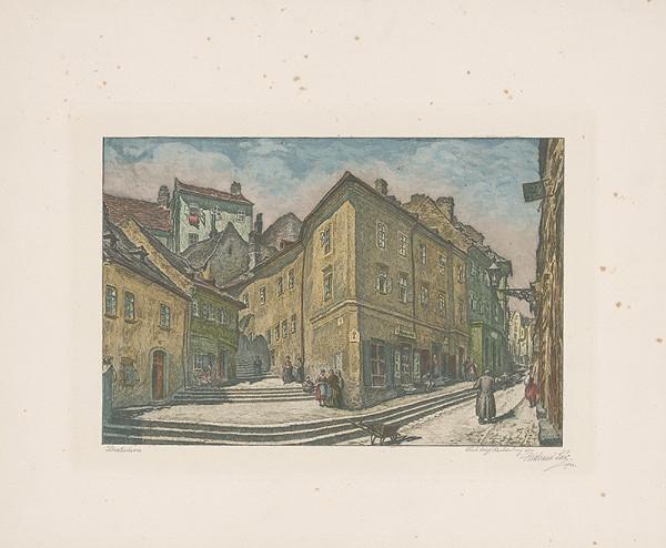 Richard Lux – Zámocké schody v Bratislave