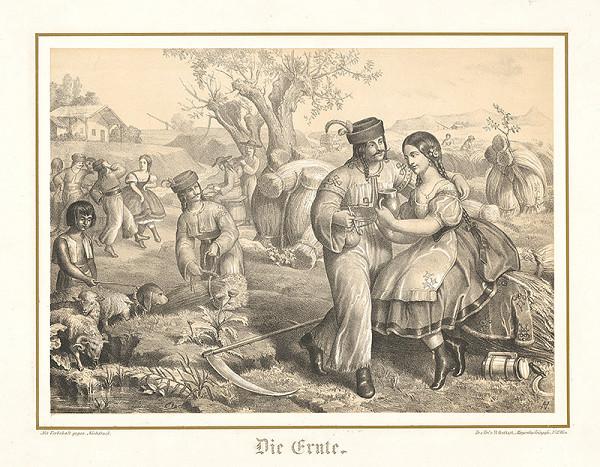 Stredoeurópsky grafik z 2. polovice 19. storočia - Žatva