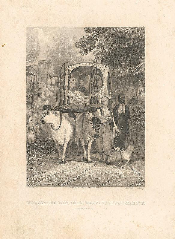 Thomas Allom, Albert Henry Payne - Procesia-sprievod sultánov