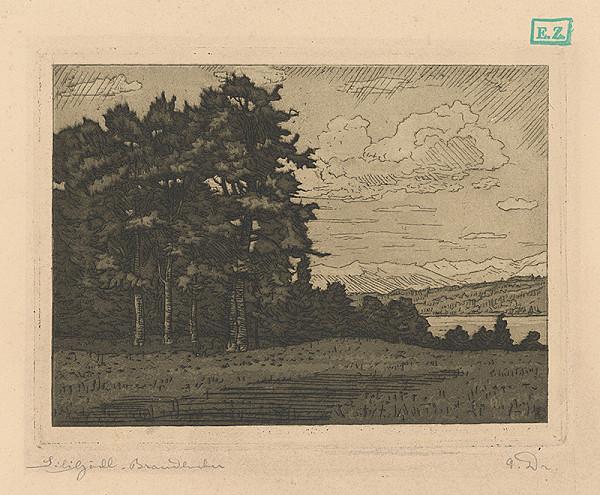 Monogramista V. D. – Krajina s lesom pri Branderburgu ?
