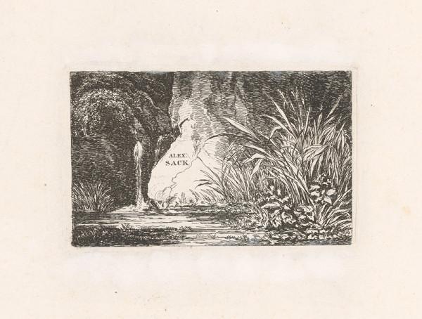 Alexander Sack – Vodné zátišie s travinami
