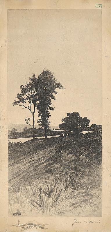 Stredoeurópsky grafik – Stromy pri rieke