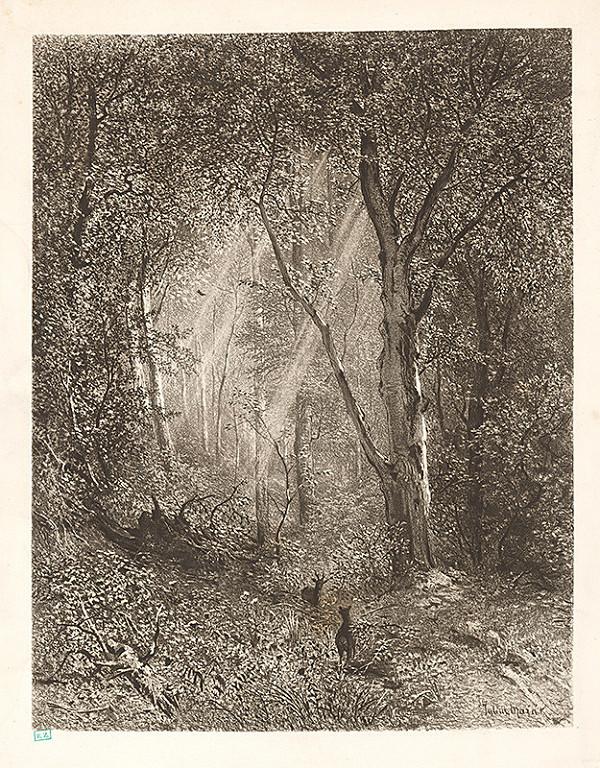 Julius Edvard Mařák - V lese