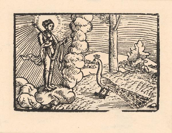 Profesionálny rezač štočkov, Hans Wolff Glaser, Wolfgang Strauch, Hans Weigel - O pávovi bohyne Juno a o slávičkovi