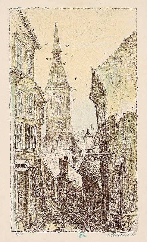 Rudolf Altrichter – Dóm Sv.Martina