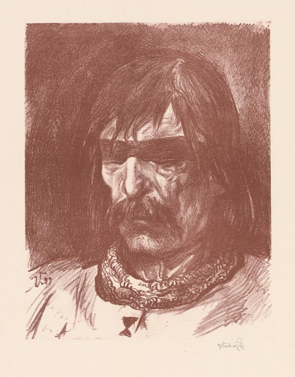Jaroslav Vodrážka - Jan Žižka z Trocnova