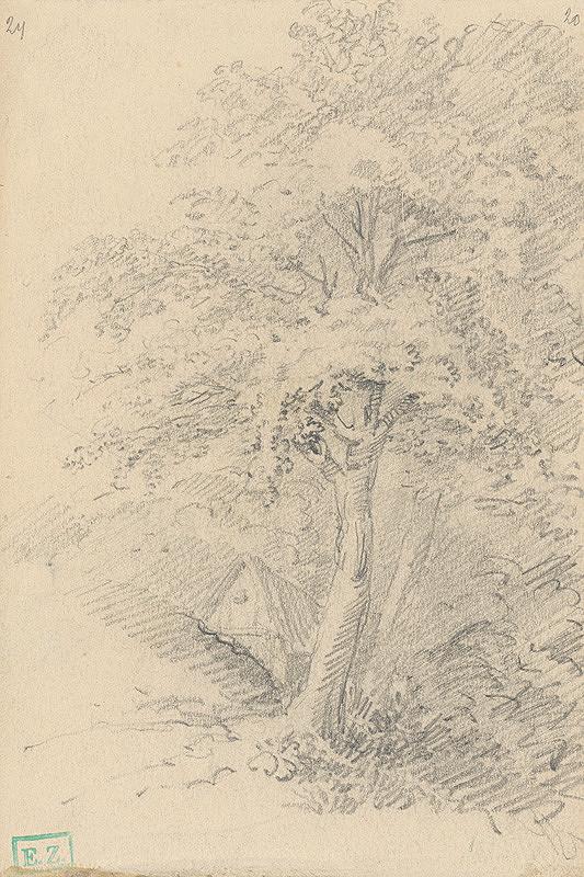 Stredoeurópsky maliar z 2. polovice 19. storočia - Romantický motív so stromami