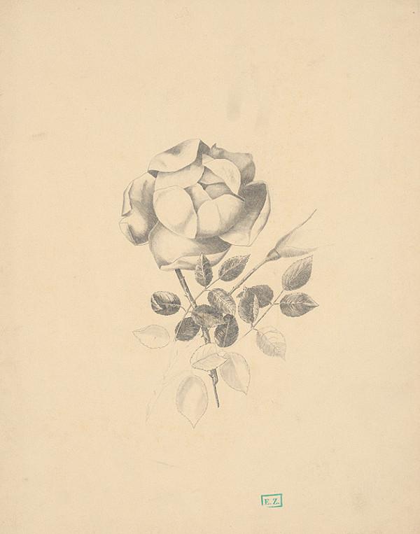 Stredoeurópsky majster z 1. polovice 19. storočia – Ruža