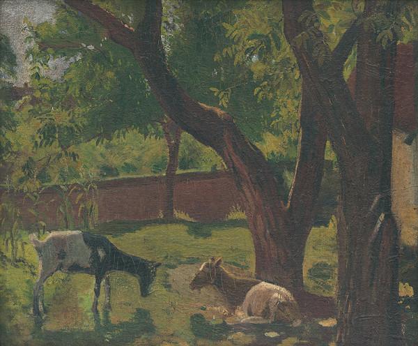 Ján Thain – Záhrada s kozami