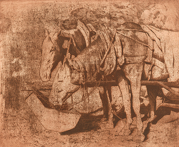 Viktor Hermély – Záprah koní