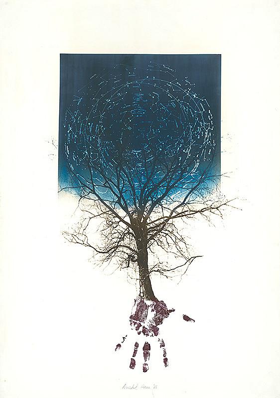 Michal Kern - Strom - obloha