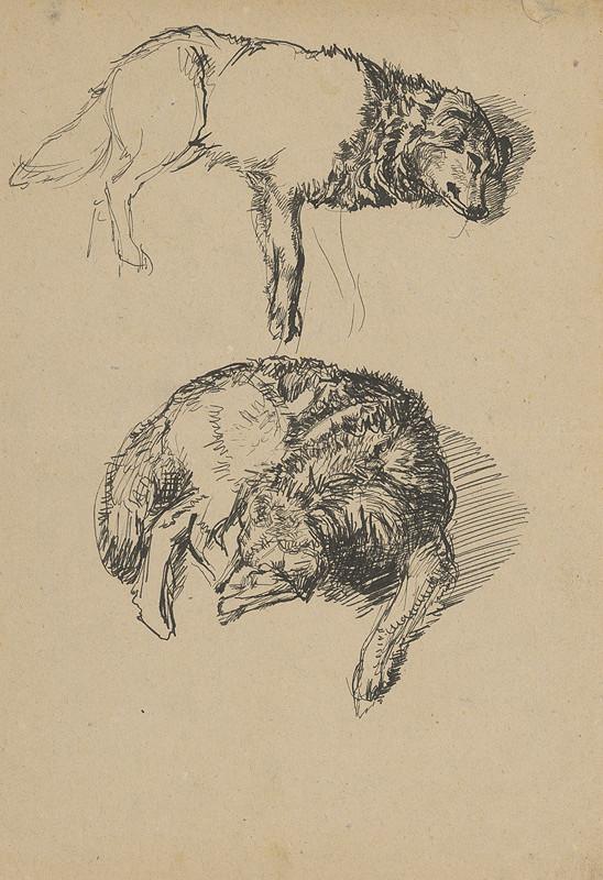 Peter Július Kern – Štúdia psov