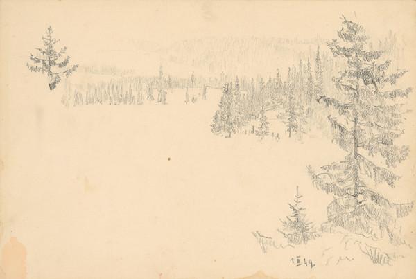 Peter Július Kern – Štúdia lesa