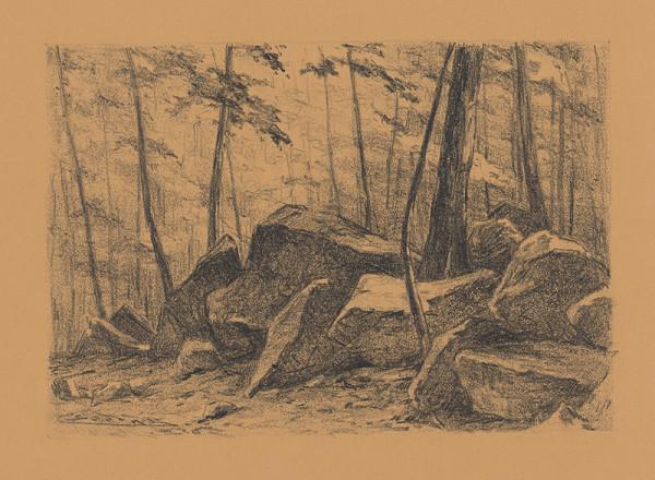 Ľudovít Čordák – Štúdia lesa