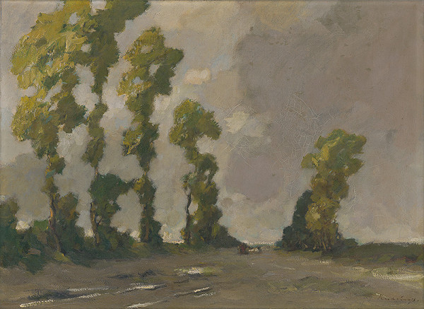 Alexander Kubínyi - Krajina s topoľmi