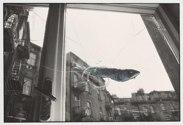 Peter Župník – Oklamaná ryba