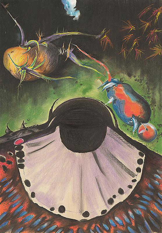 Emil Sedlák - Metamorfózy mojich pavúkov