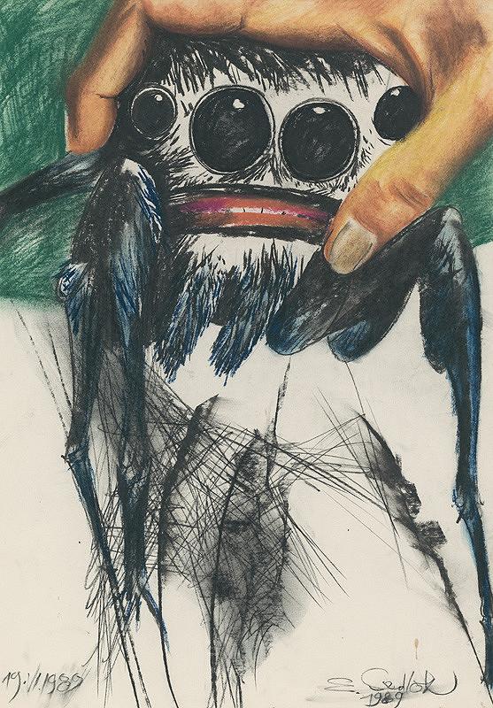 Emil Sedlák - Moje pavúky v ruke