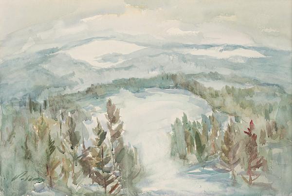 Ján Polom – Spišské lesy v zime
