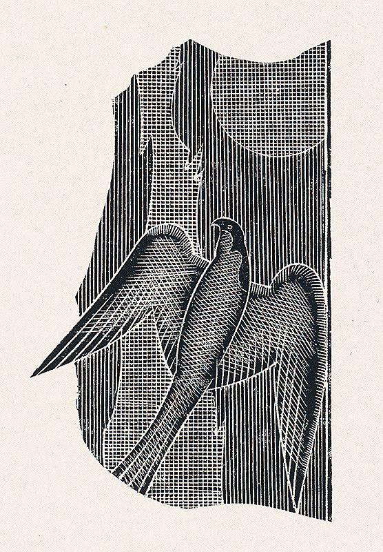 František Hübel – Vták V.