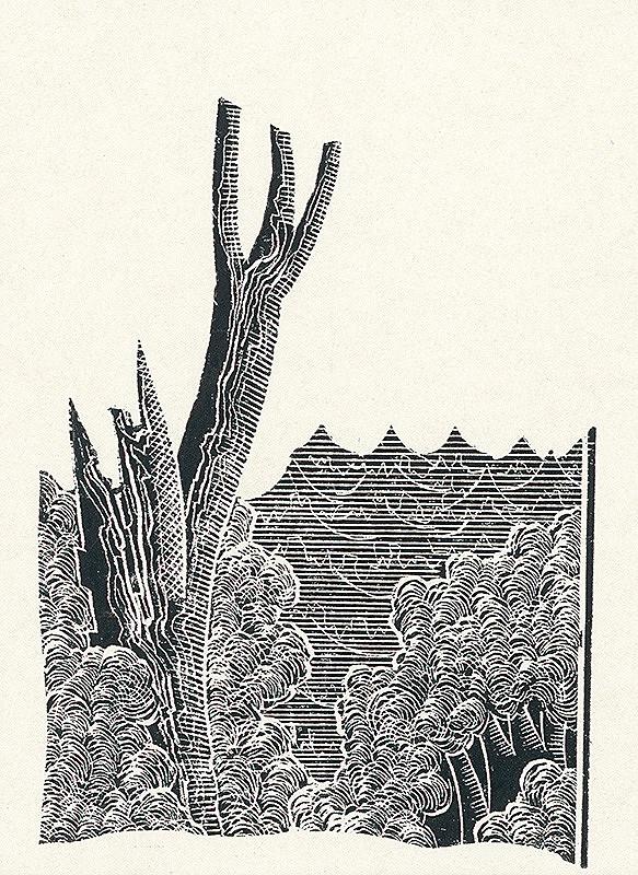 František Hübel – Strom