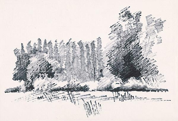 František Hübel – Na okraji lesa