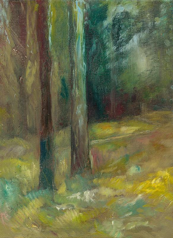 Jozef Srna ml. – V parku