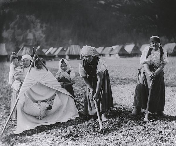 Pavol Socháň – Ženy s poľnou kolískou- Hubová