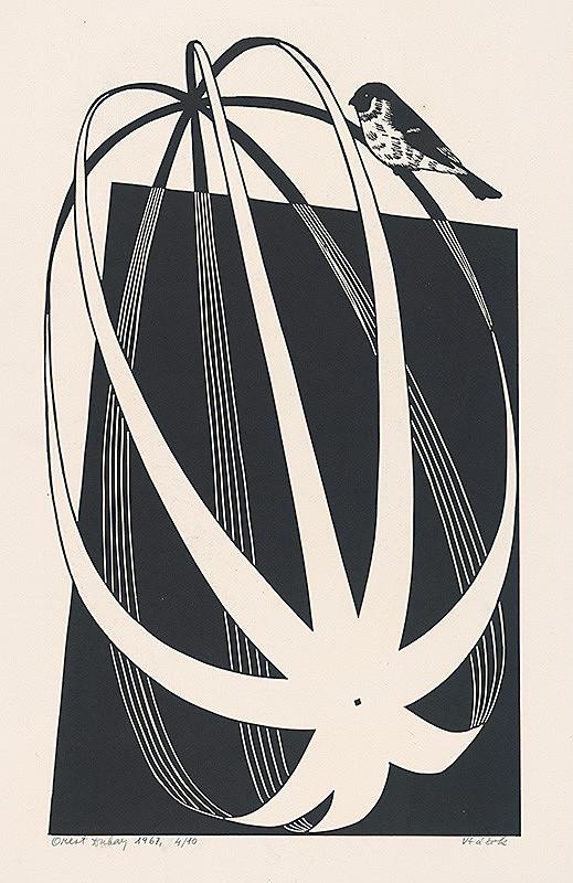 Orest Dubay - Vtáčik