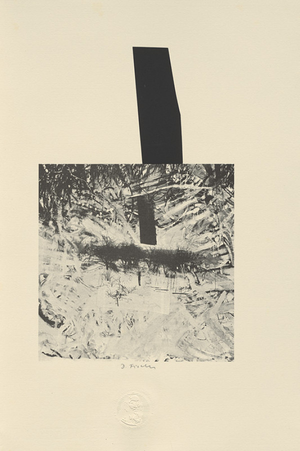 Daniel Fischer - Bibliofília Johannes Amos Comenius