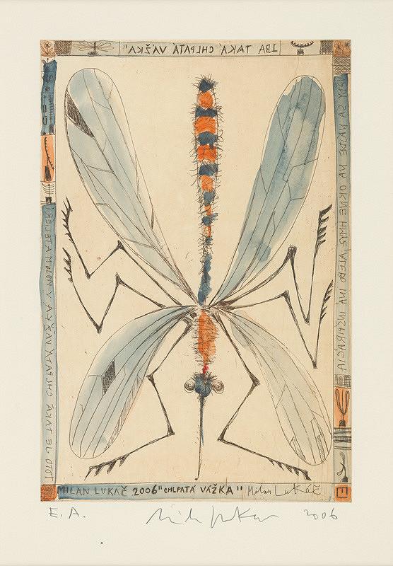 Milan Lukáč – Chlpatá vážka